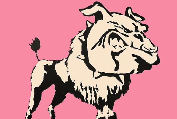 Bulldog Poodle